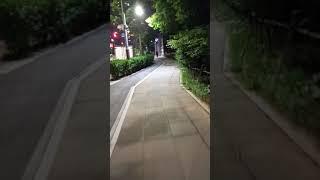 송도 추천 밤길 (자전거 vr로 힐링하기)