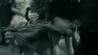 Л. Михеева - Танцуй