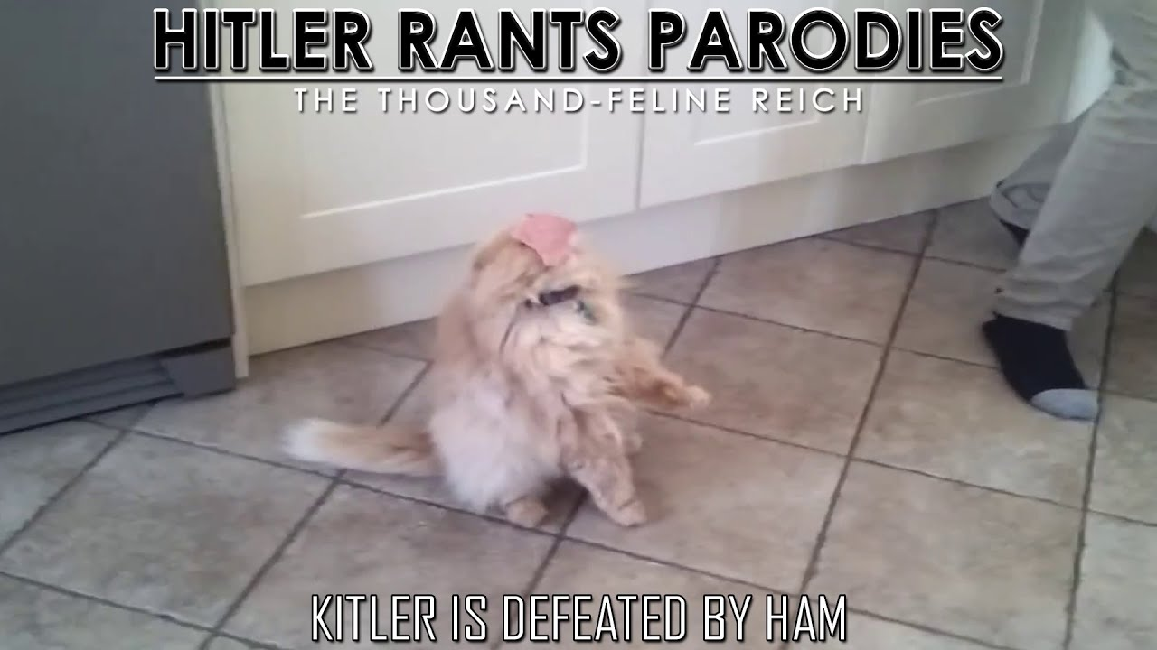 Kitler is defeated by ham