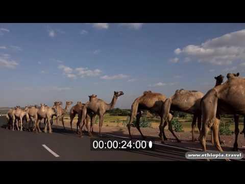 Ethiopia - Road to Aksum