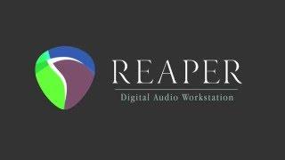 Перевод основных функций в REAPER . Видео-урок.