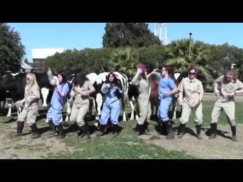 University of California, Davis veterinary students sing about bovine reproduction