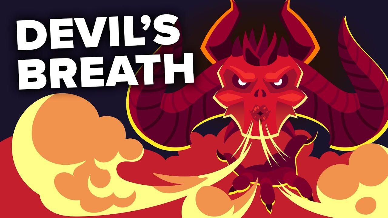 Download Devil's Breath - World's Scariest Drug?