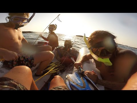 SPEARFISHING ISLAND LIFE