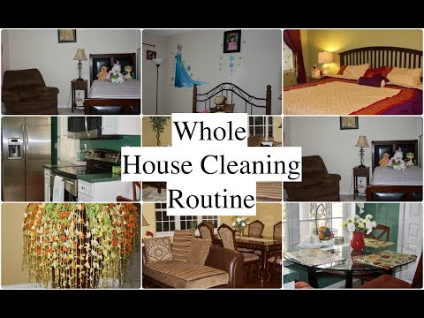 Whole House Cleaning Routine | Speed Cleaning  | Simple Living Wise Thinking