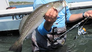 Treasure Trout - Biggest 3 Speckled Seatrout In One Episode