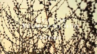 Kyuss - Gardenia - (Welcome to Sky Valley)