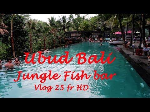 arrivée à Ubud et détente au Jungle Fish bar Ubud Bali vlog fr HD