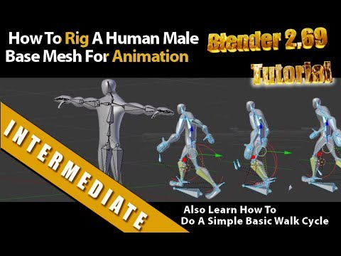 How To Rig A Human Male Base Mesh For Animation In Blender 2.69