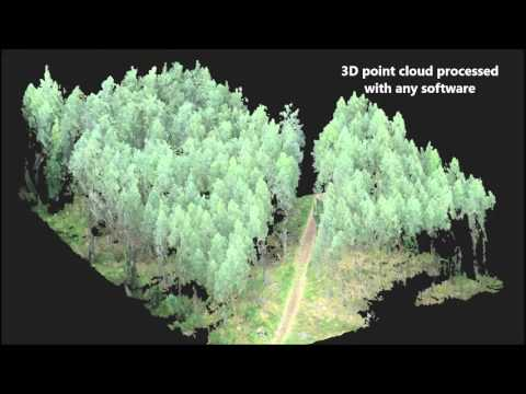 Forest Inventory With Photogrammetric Point Cloud