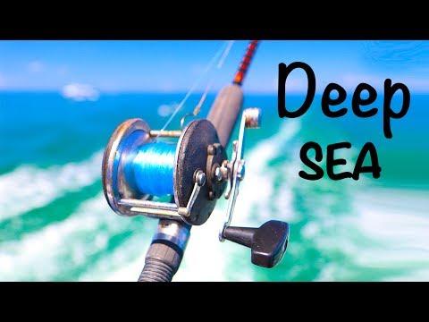 Deep Sea Fishing Adventure!! (Tropical Fish)