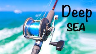 Deep Sea Fishing Adventure!! (Tropical Fish)