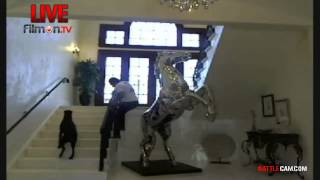 alki david tries to ride his horse statue on battlecamcom
