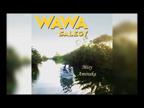 Wawa Salegy - Misy Aminaka - audio