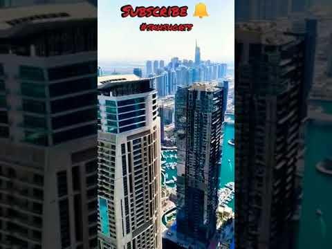 Dubai Marina View From Top #skhshorts #shorts