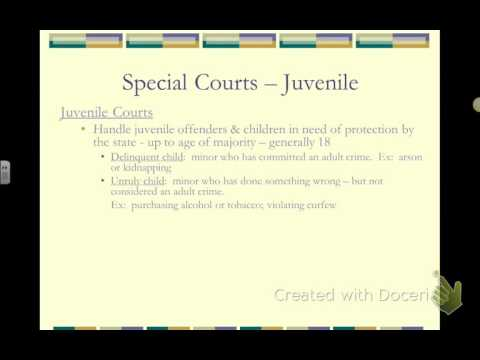 BL01 Court Systems - Federal vs State Courts