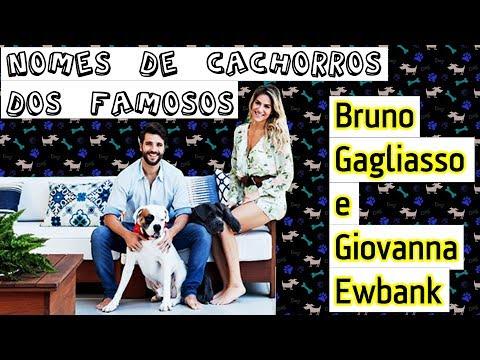 NOMES DE CACHORROS