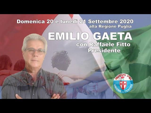 Emilio Gaeta - Appello al voto, a proposito dell'Ambiente.