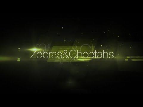 Zebras & Cheetahs Episode 3