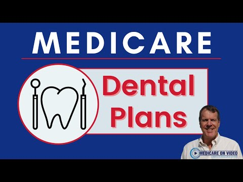 dental-insurance-options