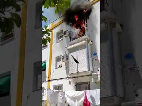 Tremendo incendio en la Barriada de la Vid en Jerez de la Frontera