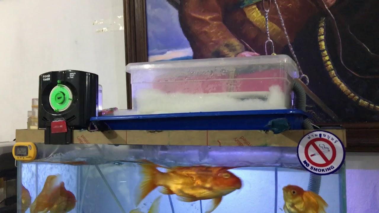 自製濾水盒效果很好 - YouTube