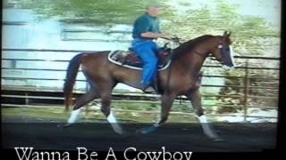 Wanna Be A Cowboy (Ohadi Indian Fire+/ x Dazzle Me) 2006 gelding