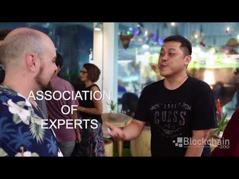 Blockchain Zoo: bringing clarity to the blockchain jungle