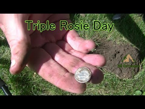 Triple Rosie Day
