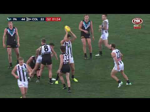 Round 21 AFL - Port Adelaide V Collingwood