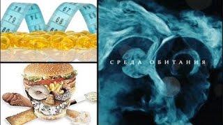 Война жиров - Среда обитания | Документальный фильм