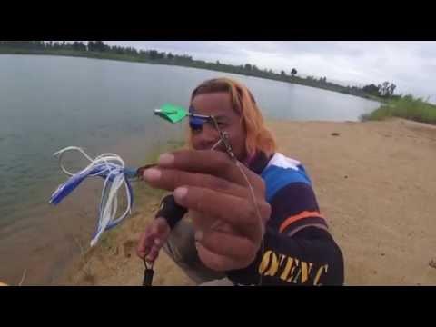 ปลาชะโดใหญ่บ่อทราย