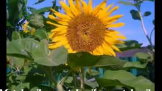Matahariku - Neno Warisman