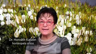 Homeopátia Dr Horváth Katalin - 4. előadás