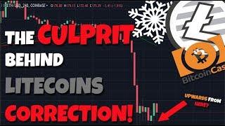 UPDATE: The Culprit Behind Litecoins Fall! - Bitcoin Cash?