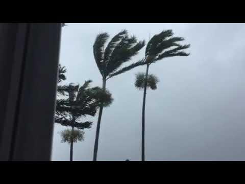 Hurricane Irma Davie (Sunday)