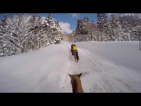 Aomori Horseriding Club:  The Mountains of Japan Hakkoda Winter Ride HD