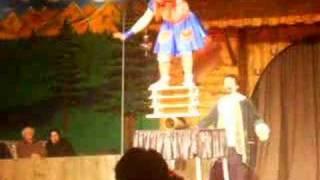 circus in olmense zoo