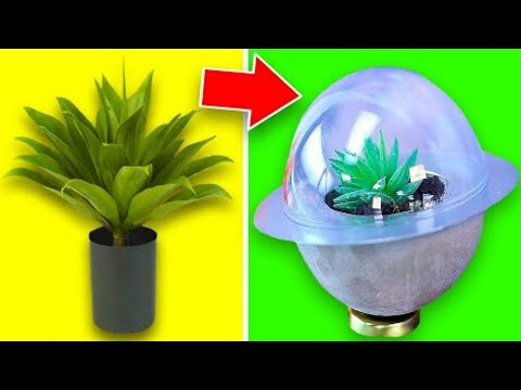 10 Easy DIY Plant Crafts