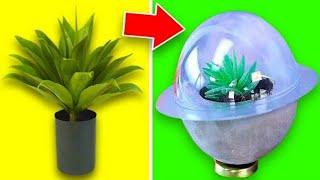 10 Easy DIY Plant Crafts
