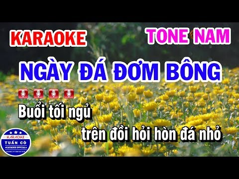 Karaoke Ngày Đá Đơm Bông || Nhạc Sống Cha Cha Tone Nam || Karaoke Tuấn Cò