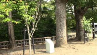 静御前もさぞ無念だったでしょうね。 鎌倉初代将軍源頼朝ゆかりの神社で...