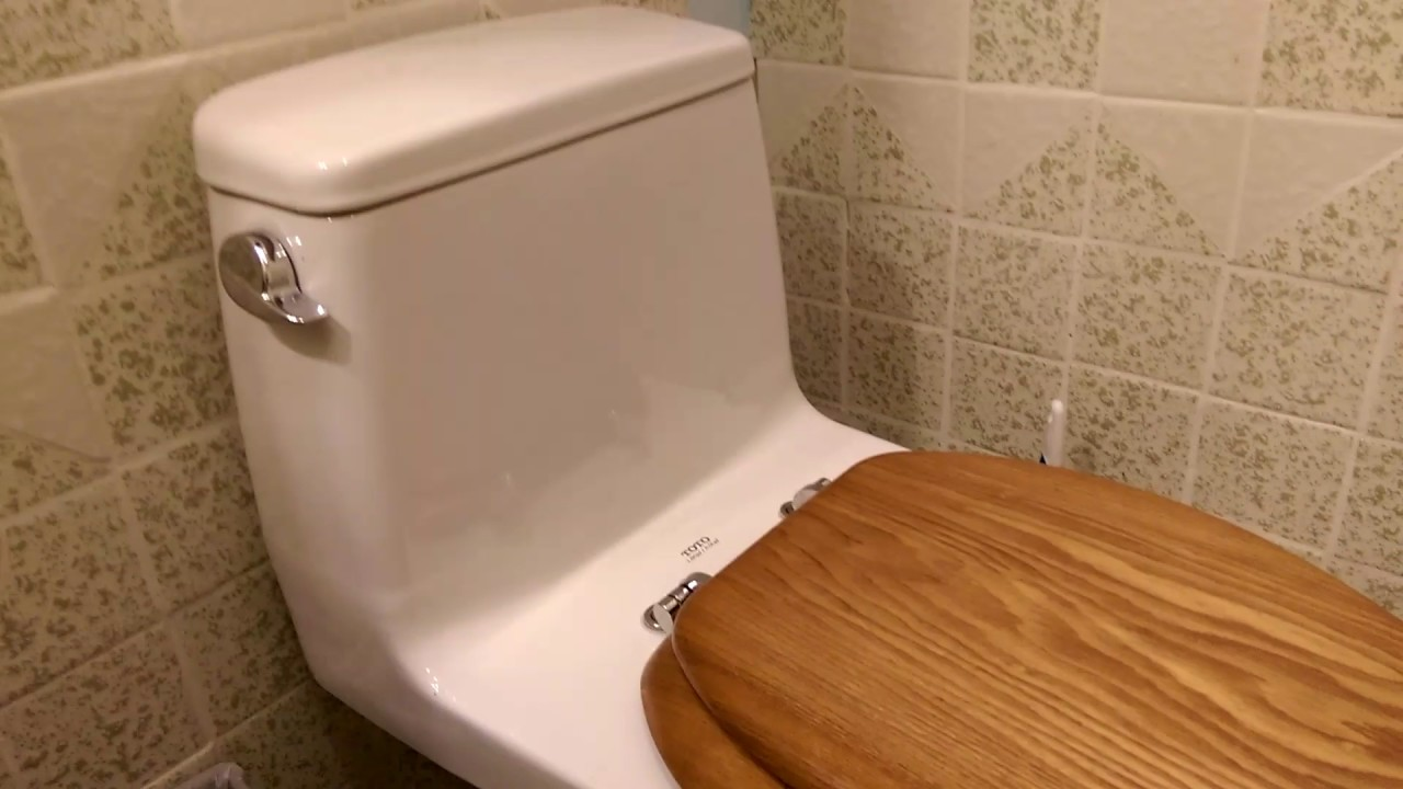 Toto one piece toilet full look and flushing - YouTube