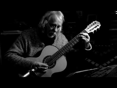 Sychra Journals #13 and #26 - 7-string Russian Guitar - Rob MacKillop