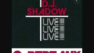 Camel Bobsled Race - DJ Shadow & Q-Bert (Complete Mix)