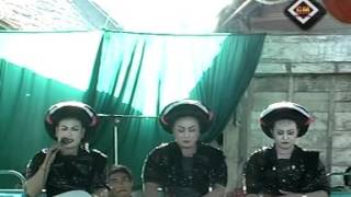 Tayub Blora,Ds.Balongsari,Kec. Banjarejo,Kopi Jahe