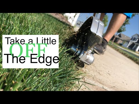 Ego 56 Volt Lithium-Ion Power Head + Edger Bare Tool