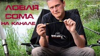 Рыбалка на сома. Ловля сома на канале / Wallerangeln am Kanal