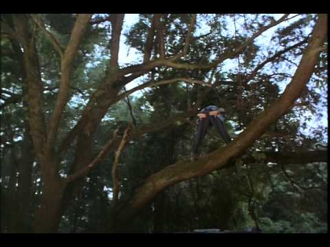 ace ventura when nature calls movie trailer
