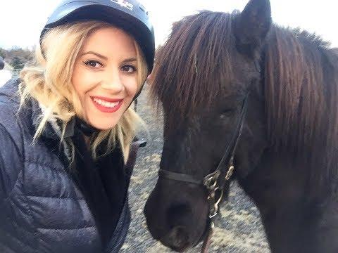 Icelandic Horses - Horseback Riding in Iceland